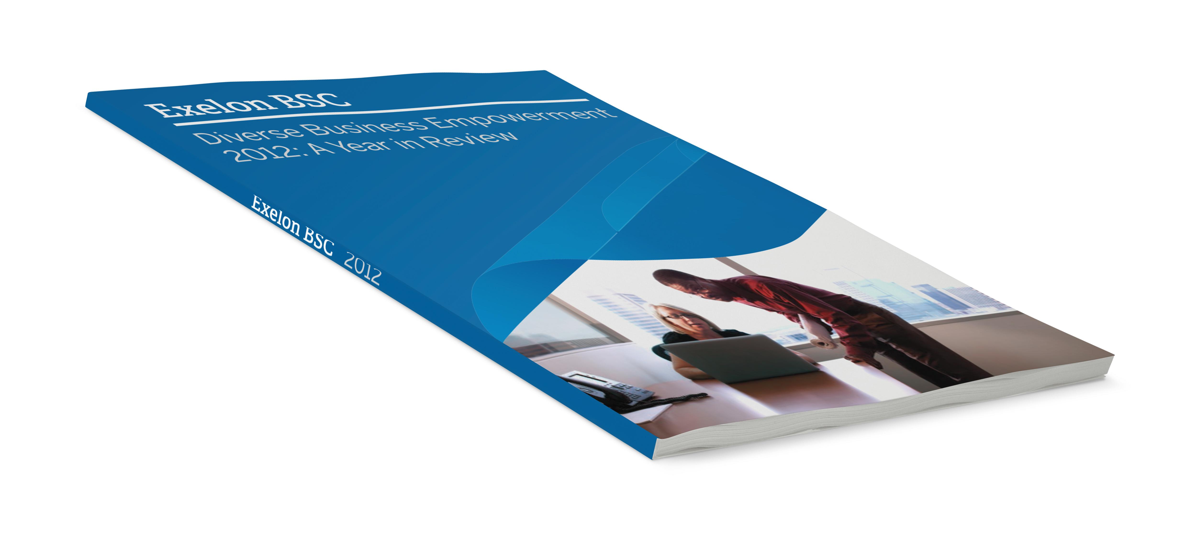 Exelon annual report
